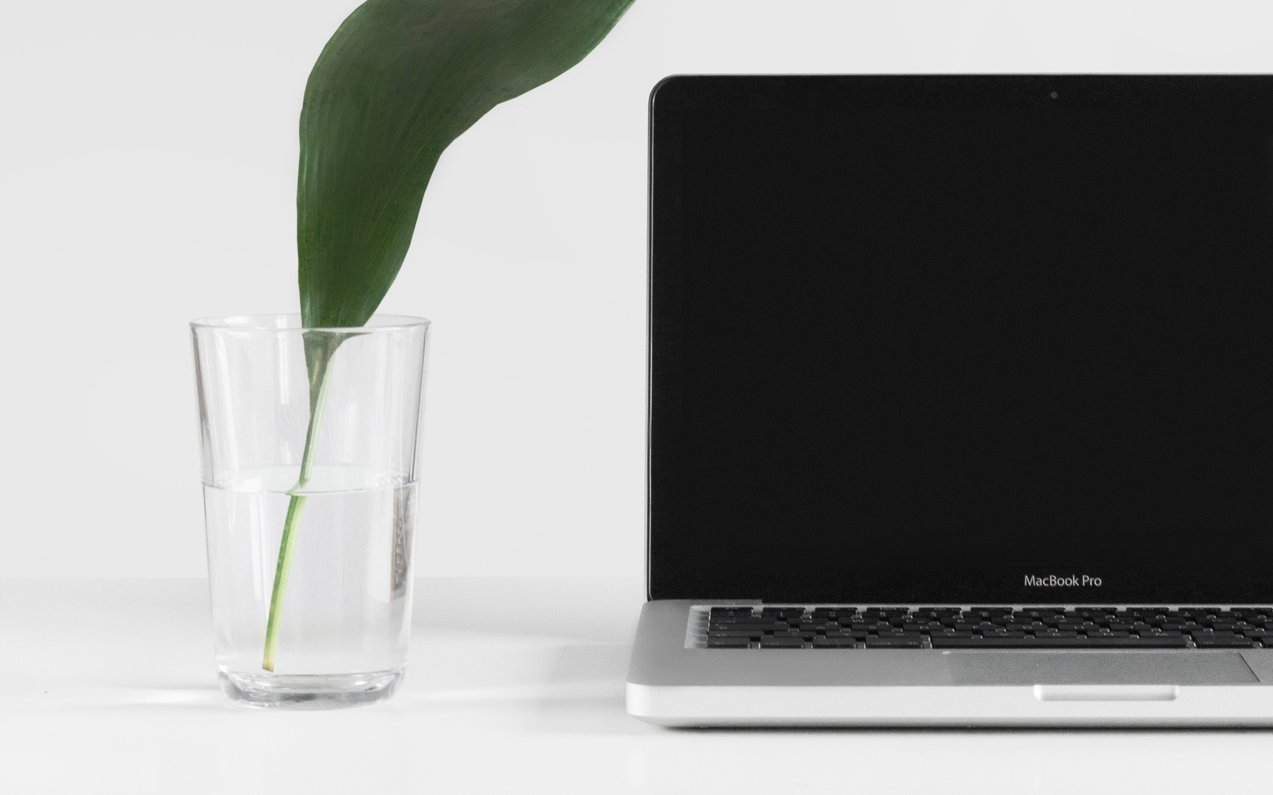 5 reasons why a clean desk benefits business growth